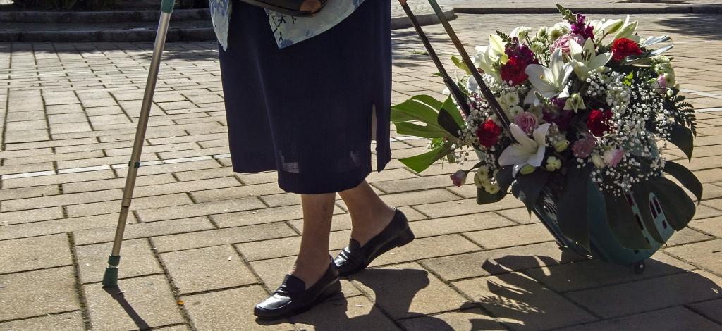 ESPAÑA DÍA DIFUNTOS:GRA287. SEVILLA, 31/10/2014.- Una señora lleva flores en un carrito camino del cementerio de San Fernando de Sevilla en vísperas del Día de los Difuntos, un jornada en que tradición, fe y flores conviven en los cementerios andaluces donde familiares, amigos y conocidos visitan panteones y sepulturas con la intención de recordar y homenajear a sus seres queridos. EFE/Jose Manuel Vidal